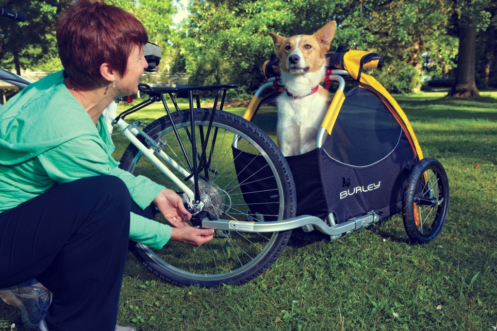 5c51f026d3c Here at Rover, we're always looking for new ways to be active with our  dogs, and this Burley Tail Wagon Bike Trailer turned out to be just the  thing we were ...