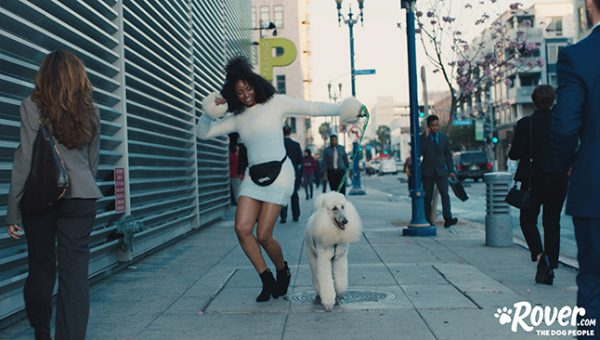 How To Get Your Dog Into Showbiz Featuring the Stars of 'Walk It Out'