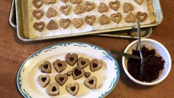 peanut butter and jam sandwich cookies for dogs HERO