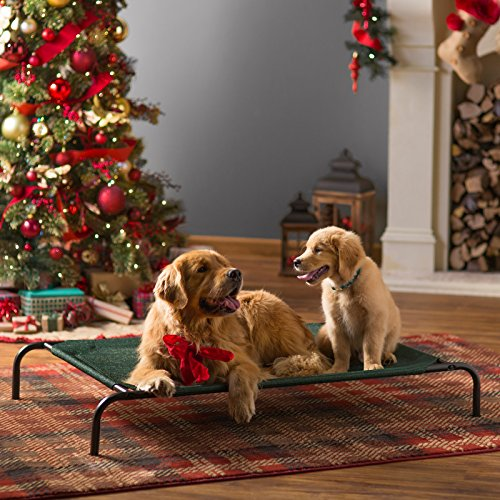 Coolaroo XL Elevated Pet Bed For Hot Dogs