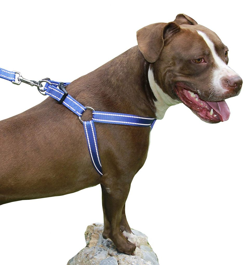 CHILIPET Step In Dog Harness