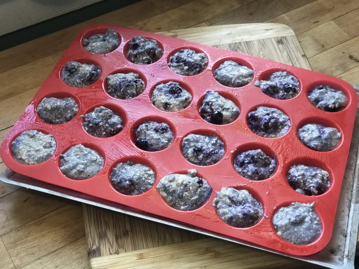 blueberry muffins for dogs