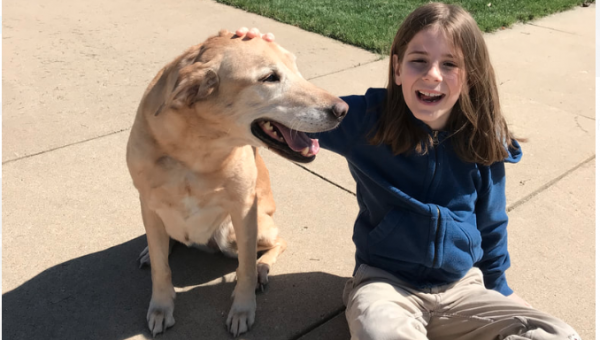 Nine-Year-Old Takes Picture with Every Dog He Pets and the World Can't Get Enough