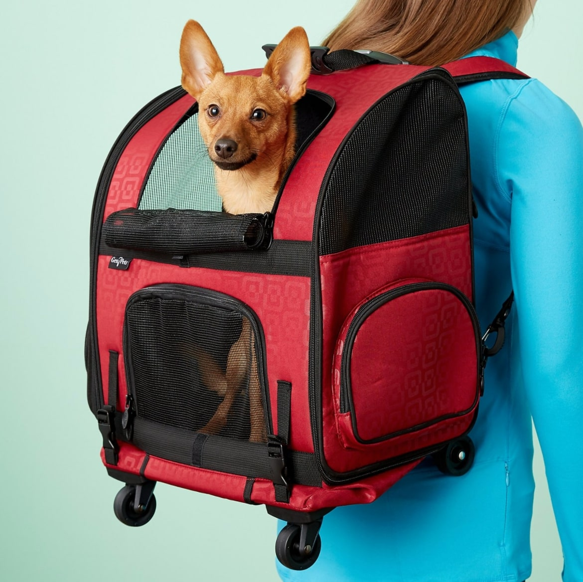 Gen7Pets Roller Pet Carrier