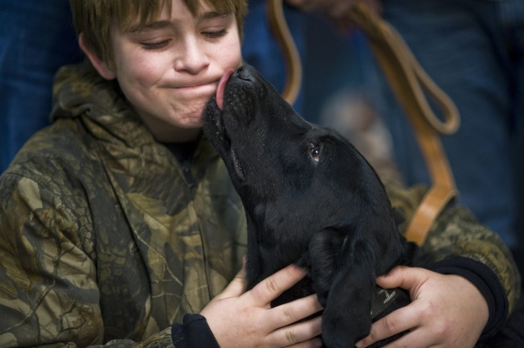 A therapy dog licks the cheek of a young student.