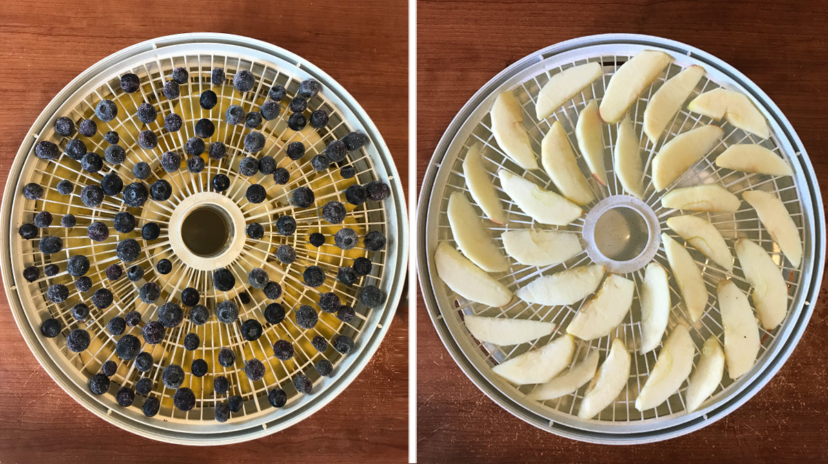 dehydrated fruit treats for dogs