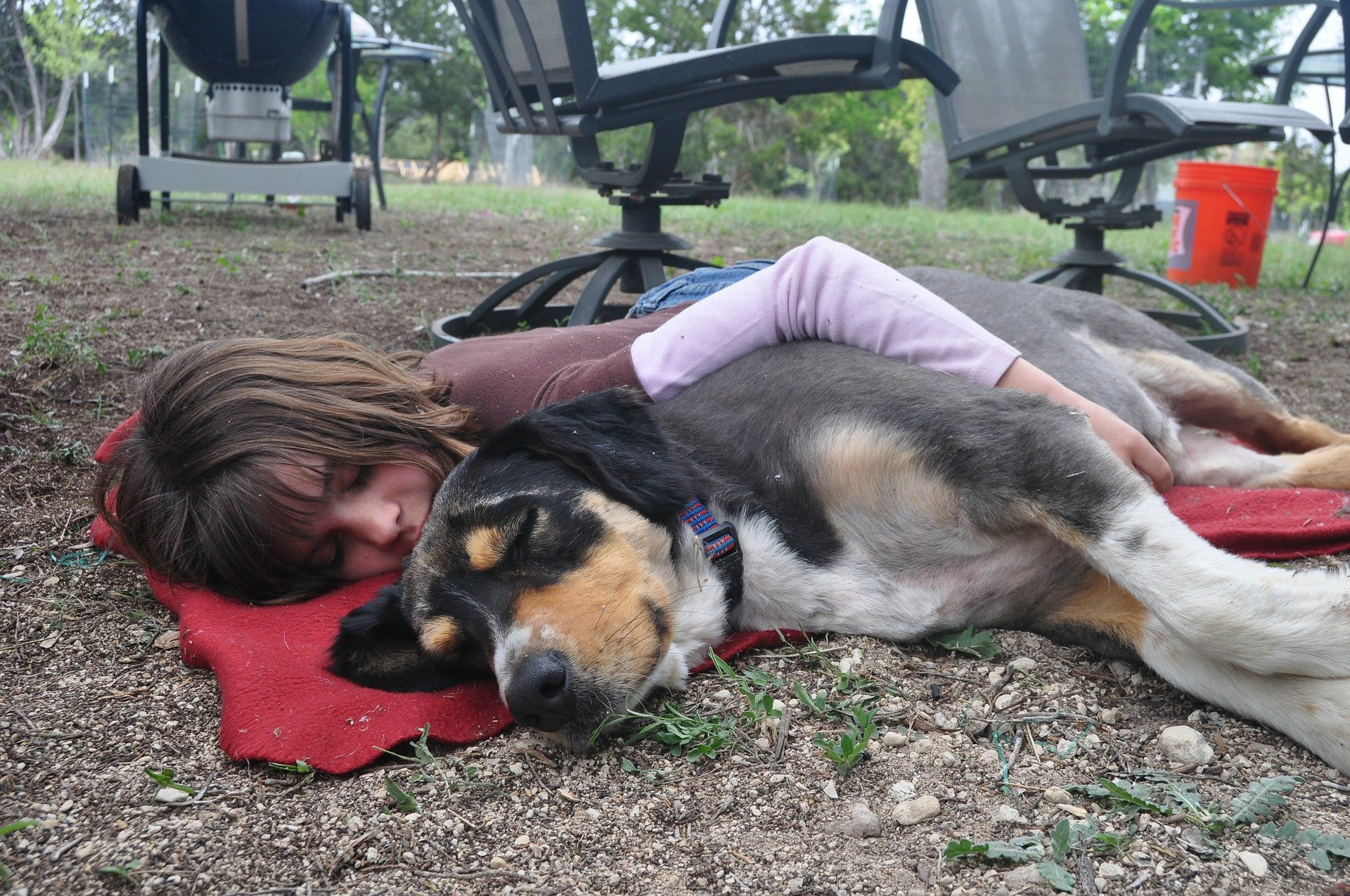 girl hugging a dog lying down bonded to each other