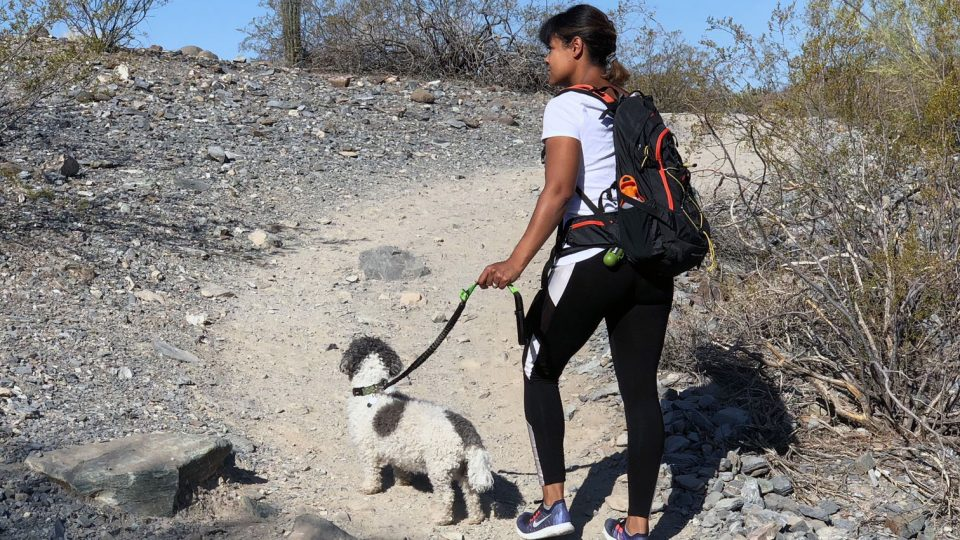 hiking with hands free dog leash