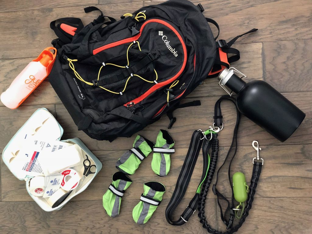 A still of Melanie's backpack with examples of dog hiking essentials