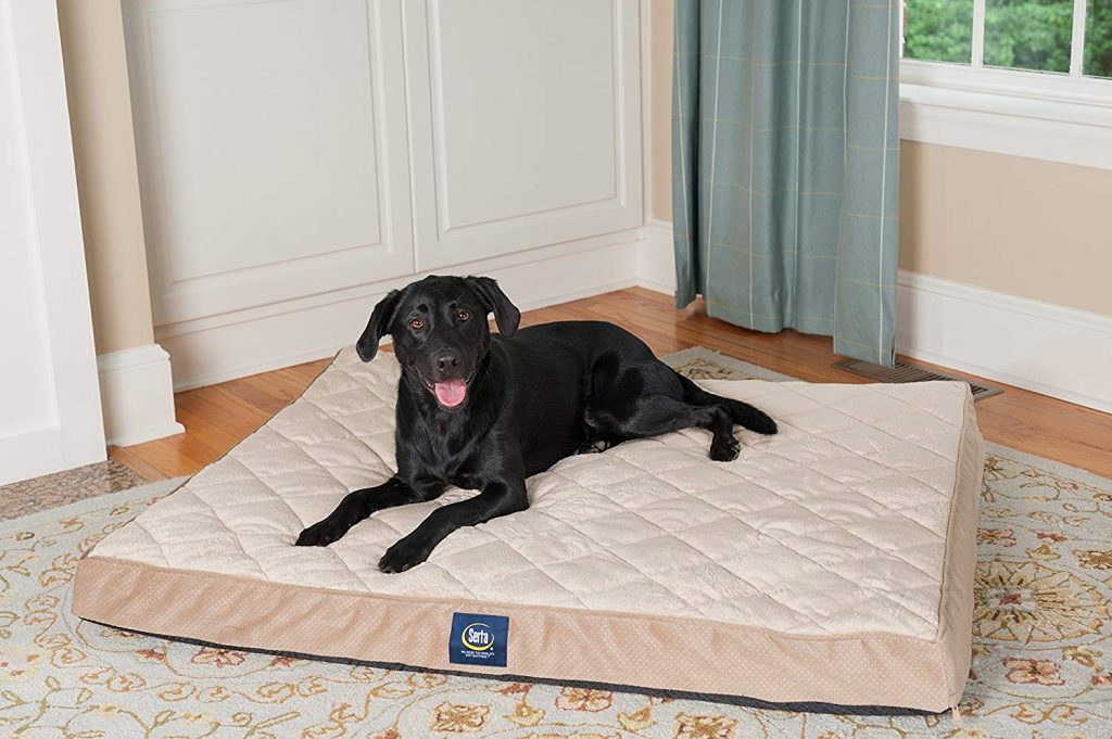 Serta Memory foam pet bed