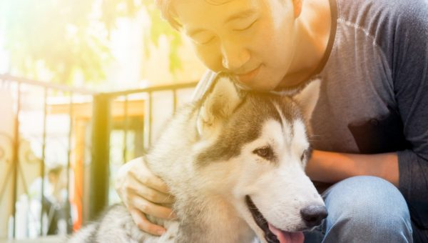 Quiz: What Kind of Dog Dad are You?