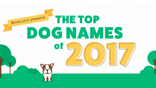 The Top Male and Female Dog Names of 2017