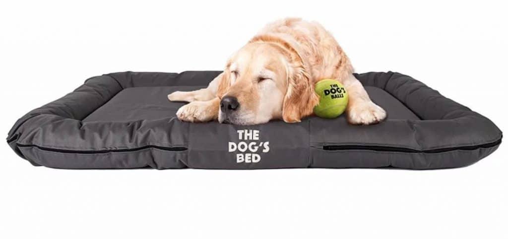 Dog Beds For Golden Retrievers 6 Top, Waterproof Outdoor Dog Bed Canada