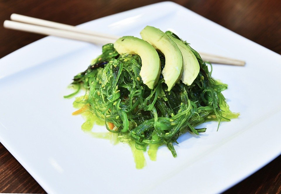 Seaweed salad with avocado on top. Both tasty for dogs!