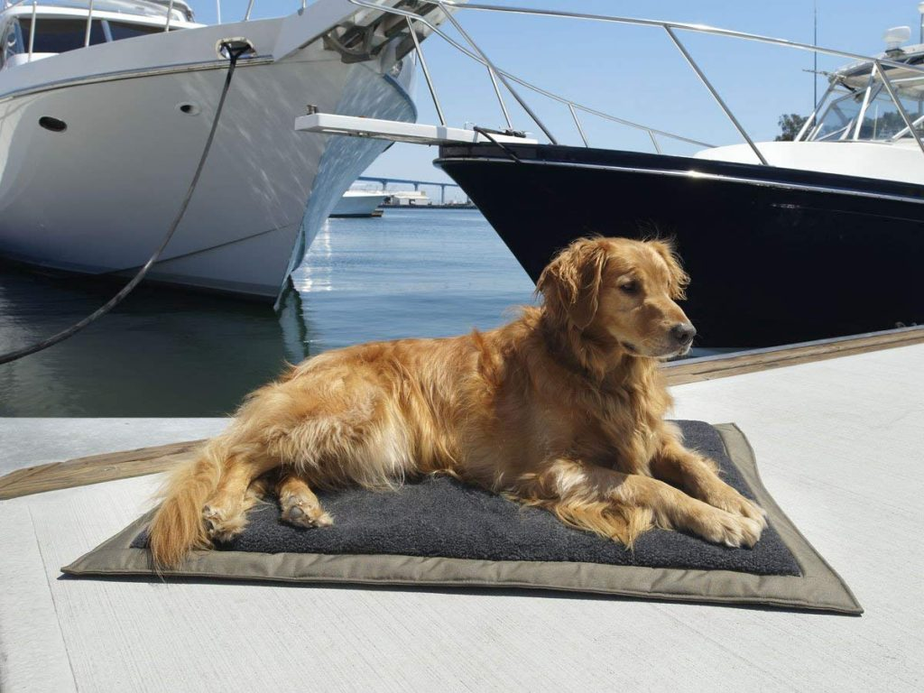 Top 6 Golden Retriever Dog Beds The Dog People