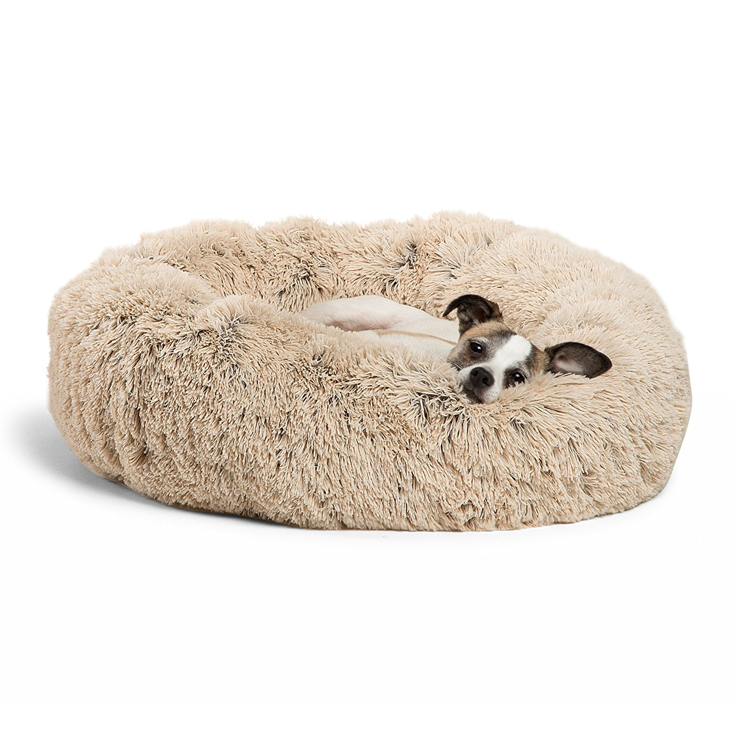 Picture of: 5 Best Dog Beds For Shih Tzus The Dog People By Rover Com