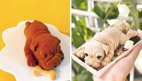 People Are Struggling to Eat These Viral, Hyperrealistic Dog-Shaped Desserts