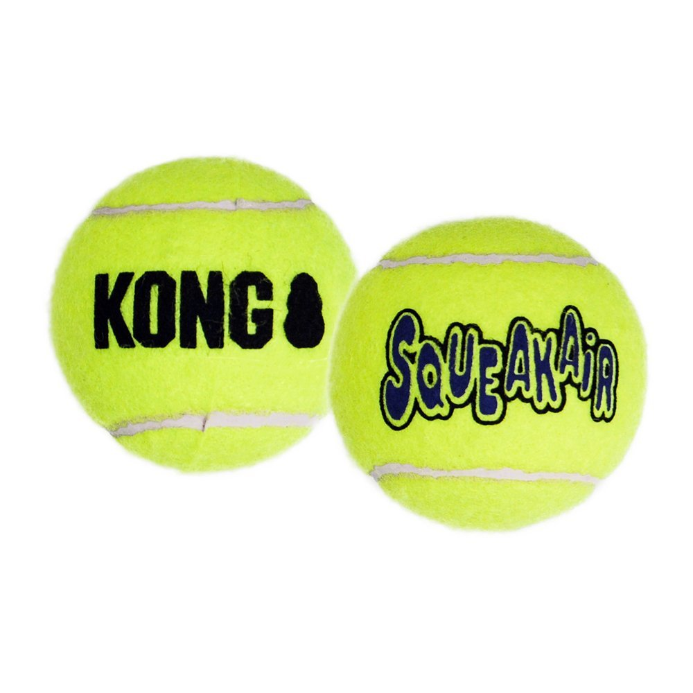 tennis ball fetch toy for dogs