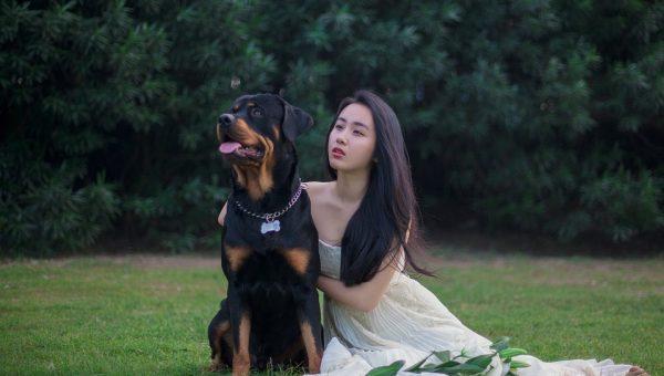 Top 5 Dog-Friendly Wedding Venues in Washington, DC