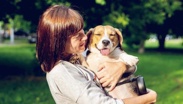 Na De Vakantie: Zo Komen Jij En Je Hond Weer Succesvol In Het Dagelijkse Ritme