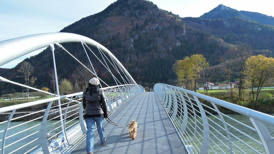 A woman walks her Rover dog on a bridge.