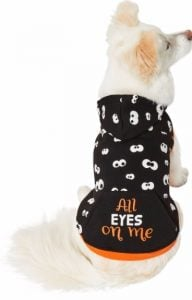 """dog wearing """"All Eyes on Me"""" Halloween shirt with glow in the dark eyes"""