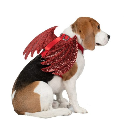 devil wings costume for dogs harness