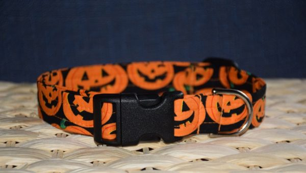 Literally Just 21 Halloween Dog Collars to Get Your Dog's Trick or Treat On