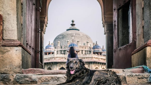 The 75 Best Indian Dog Names