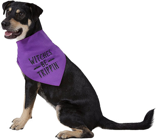 witches be trippin dog bandana halloween
