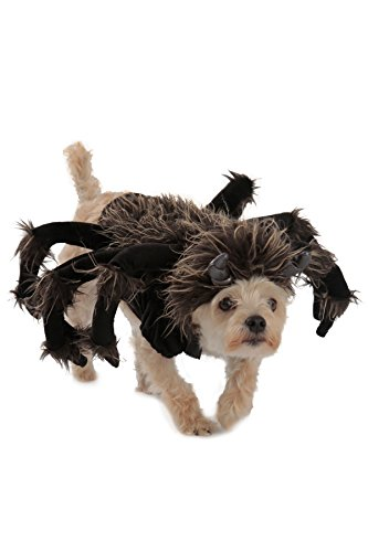 Spider scary dog costume
