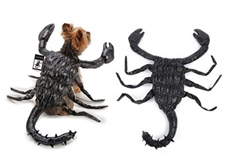 Scorpion scary dog costume