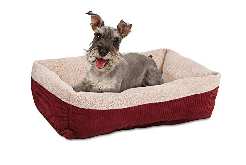 Best Heated Dog Beds For Toasty Naps Snoozes And Sleeps