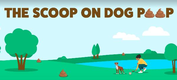 Poops Scooped: America's Best Dog Poop Scoopers Reveal Their Secrets