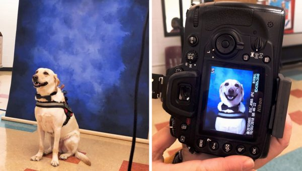 Service Dog's Surprise Yearbook Photo Goes Viral