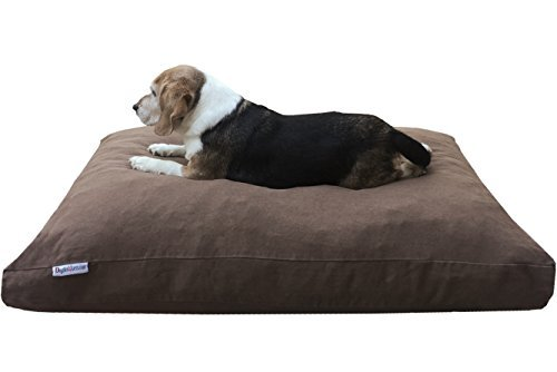 7 Indestructible Dog Beds for Chew-tastic Dogs | The Dog