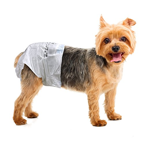 The Best Dog Diapers For 2018 Your Complete Guide Plus Expert Tips