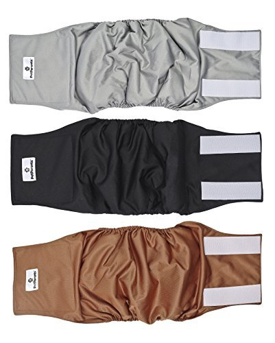 three-pack of Pet Parents belly band