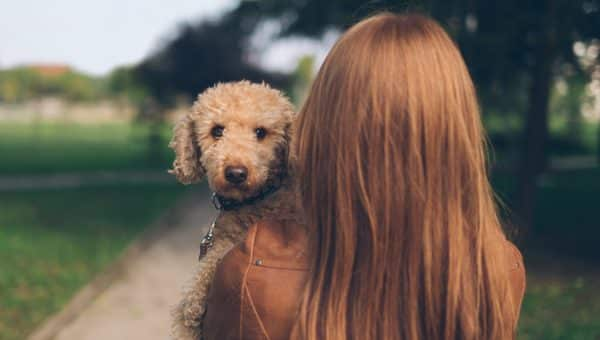 The 106 Best Thanksgiving Dog Names of 2018