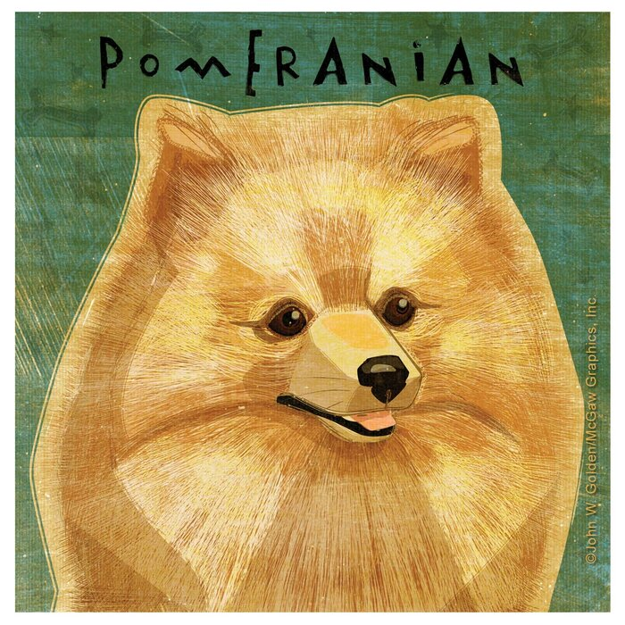 Gifts for Pomeranian Lovers