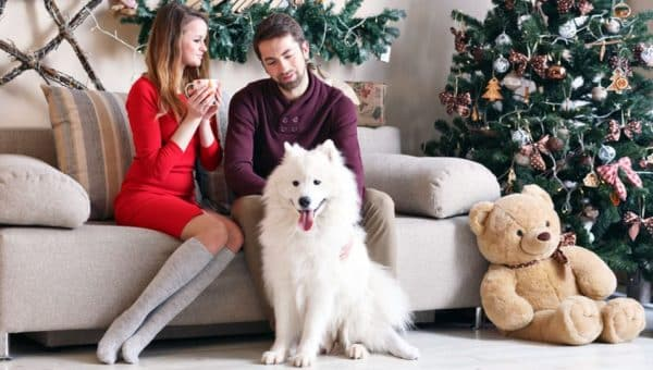 Top Gifts for Dog Lovers