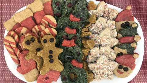 colorful holiday cookies for dogs HERO