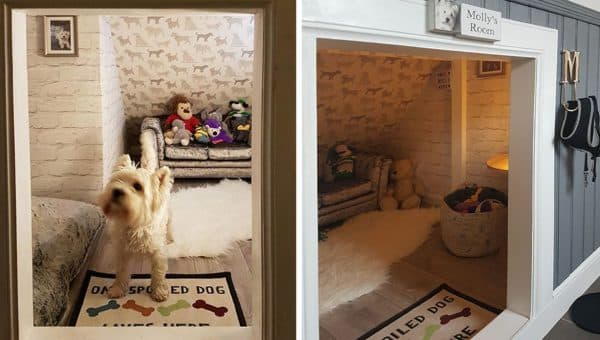 Family Builds Westie Her Own Room So She Won't Be Jealous of New Baby