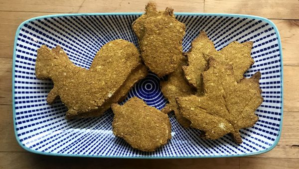 These Homemade Pumpkin Pie Dog Cookies Are for the Best Dogs– Yours! [Recipe]