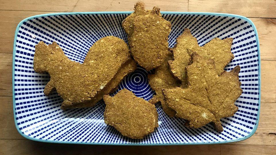 pumpkin pie dog cookies