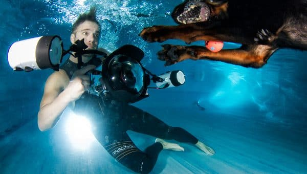 The Incredible True Story Behind the Underwater Dog Photos that Went Viral and Became a Book