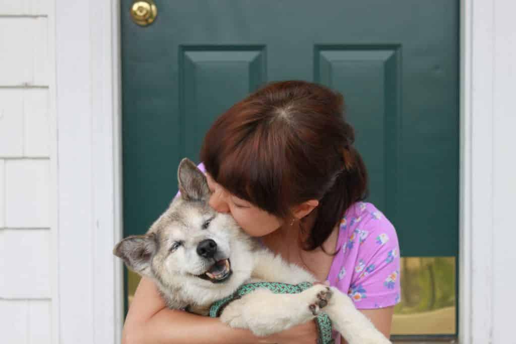 dog getting hugged by woman