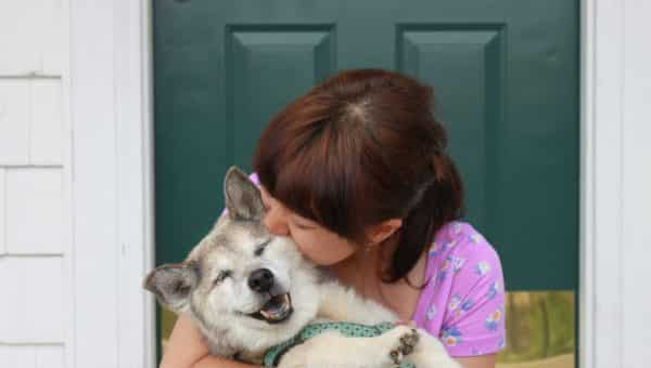 New Report Shows Dog Love Eclipses Romance This Valentine's Day