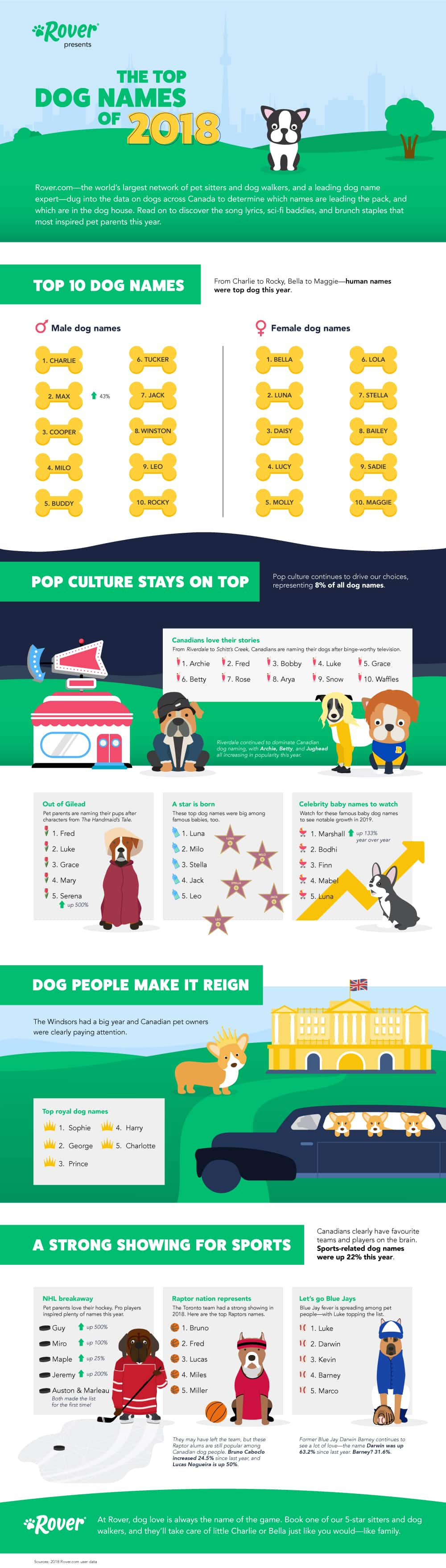 top dog names of canada infographic
