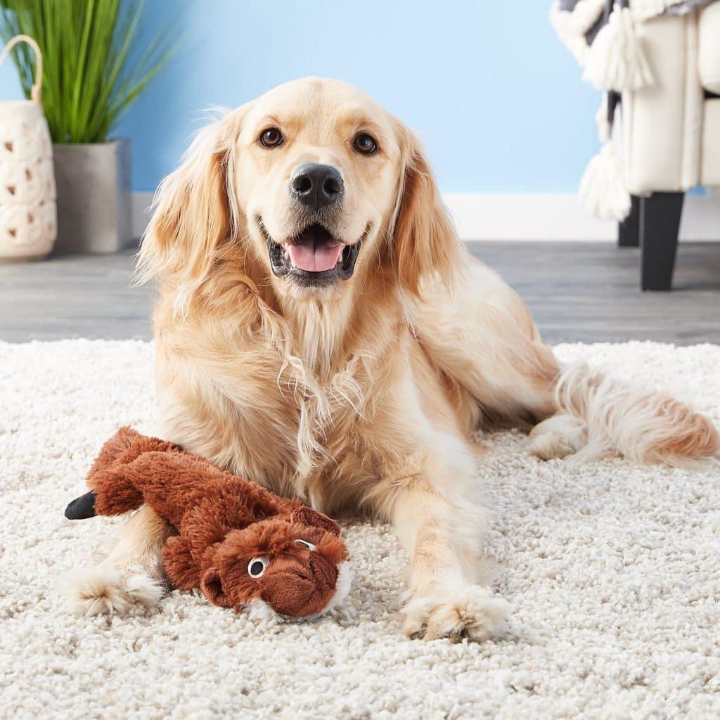 Green Dog Toys For A Smaller Eco